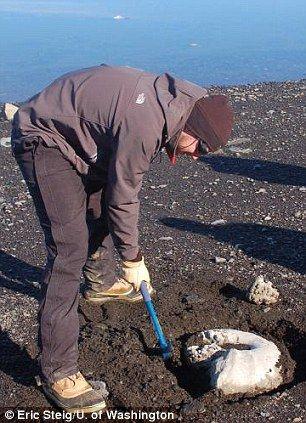 托宾2009年在南极洲詹姆斯-罗斯岛上发现一块大菊石化石。照片显示,这位科学家正在清理化石周围的沙子。